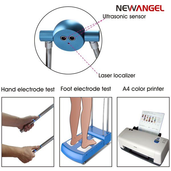 Body fat analyser machine for height and health assessment GS6.6